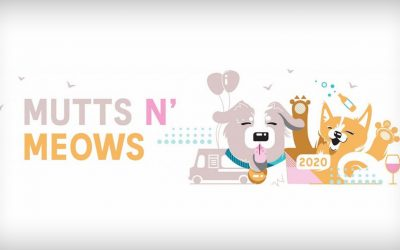 Mutts n' Meows Mixer