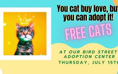 FREE Cat Adoption Day