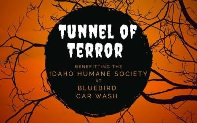 Tunnel of Terror